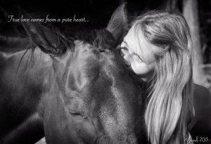 Mita hevonen voi sinulle opettaa siitä kuka olet