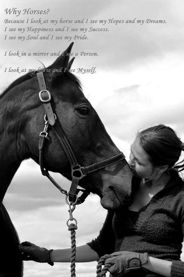 Sellaisena kuin olet- Ajatuksia hevosen viisaudesta